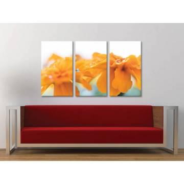 Három részes vászonkép - Water Drops & Yellow Petals Vízcseppek és virágszirom - vászonkép - 3a-100459