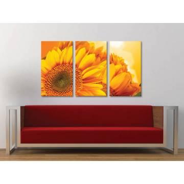 Három részes vászonkép - Yellow Sunflower Petals - Sárga Napraforgó Szirmok - vászonkép 3a-100462