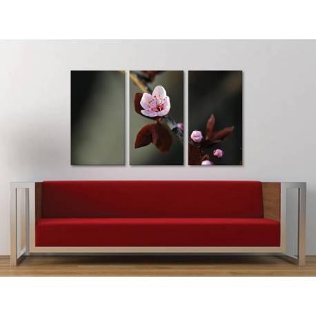 Három részes vászonkép - Blossom -Virágzás - Vászonkép 3a-100488
