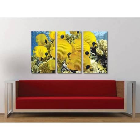 Három részes vászonkép - Yellow Submarines - Sárga Tengeri Halak - Vászonkép 3a-100491