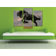 Három részes vászonkép - The balck horse - fekete ló vakrámára feszített vászonkép 3a-100238 - 2