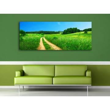 Road'n meadow - földút a réten - no. 100159