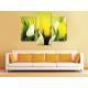 Három részes vászonkép - Play of colors - színes tulipánok vászonkép 3a-100309