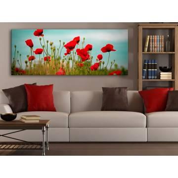 Poppys and clouds - pipacs és felhõk - 100172