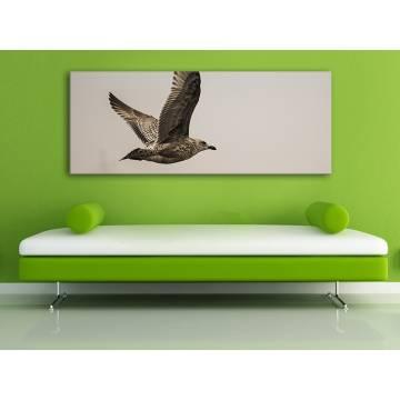 Fly alone - sirály az égen - vakrámára feszített vászonkép 100222