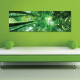 Green bamboo - bambusz erdõ - vászonkép