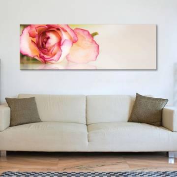 Beautyful rose petals - rózsa szírmok - vászonkép