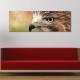 Eagle eye - sas szem - vászonkép - 1
