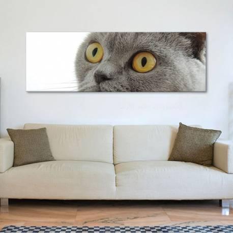 Watching cat - macska - vászonkép - 1