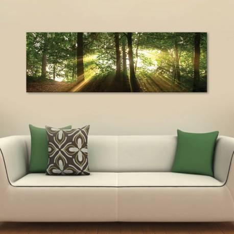 Rays - erdei fények - vászonkép