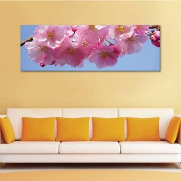 Pink blossom II - rózsaszín virágzás II - vászonkép