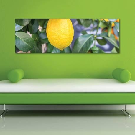 Lemontree - vászonkép
