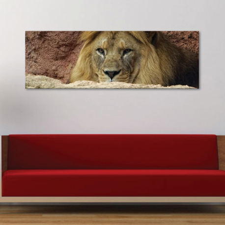 Lionking - oroszlán vászonkép - 1