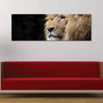 Authority of the lion - vászonkép