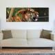 Tiger life tigris - vászonkép
