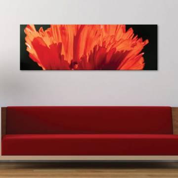 Petals in red - piros szirmok vászonkép