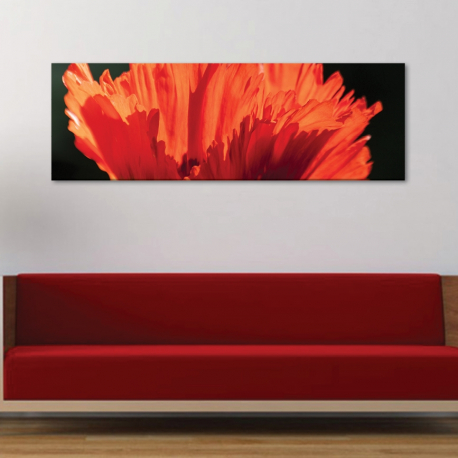 Petals in red - piros szirmok vászonkép - 1