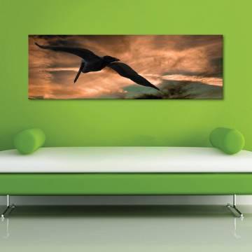 Freedom - Szabad madár vászonkép