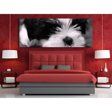 Darling - kutyus vászonkép 100253