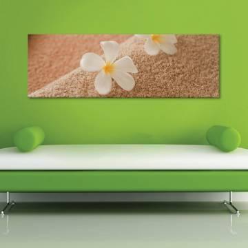 Harmony - Virágok harmóniában vászonkép