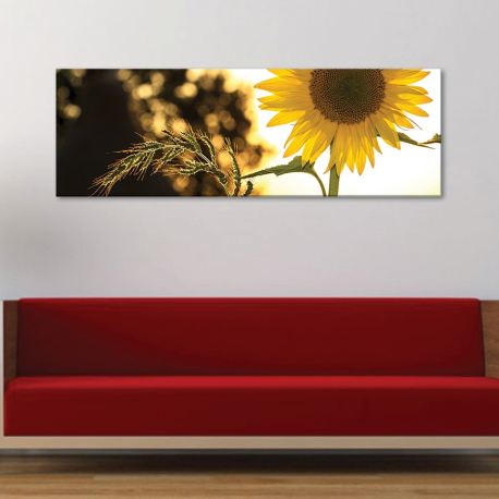 Slim flower - kecses napraforgó vászonkép