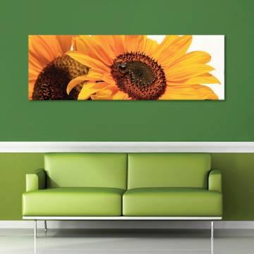 Couple sunflower - napraforgó pár vászonkép