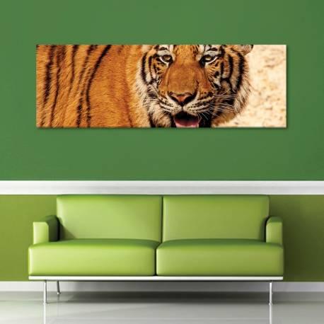 Keep calm - nyugodt tigris vászonkép - 1