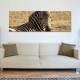 Proud zebra - büszke zebra vászonkép