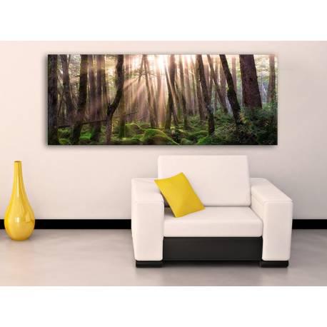 Forest sunshine - ersdei fények vászonkép 100282