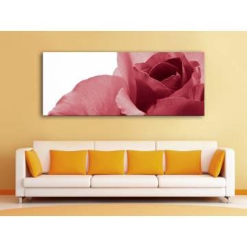 Bloomy rose - piros rózsa - vászonkép 100288