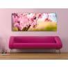 Pink bloom - Rózsaszín virágzás - vászonkép 100292