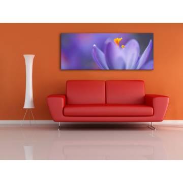 Spring crocus - virág vászonkép 100308