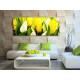 Play of colors - színes tulipánok vászonkép 100309