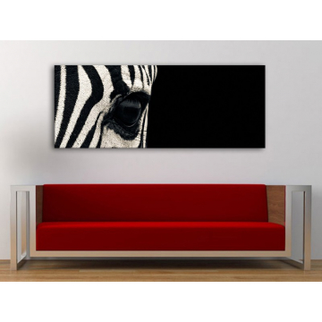 Black snd white - zebra vászonkép 100358