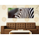 Zebra pattern - zebra mintás vászonkép 100362