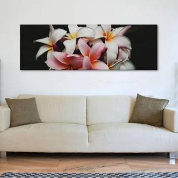 Beautiful flowers - gyönyörû virágok - vászonkép