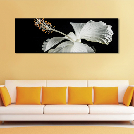 White hibiscus - fehér hibiscus - vászonkép - 1