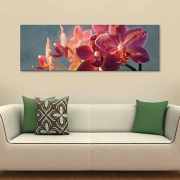 Orchids in he morning - orchídeák ébredése - vászonkép