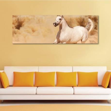 Wild horse - vad ló - vászonkép