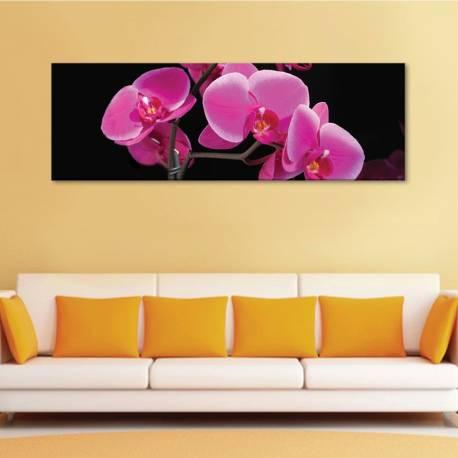 Life of pink flower - rózsaszín orchidea - vászonkép