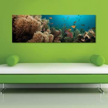 Underwater big family - tenger mélyén - vászonkép