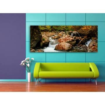 Stony brook - hegyi patak vászonkép 100382