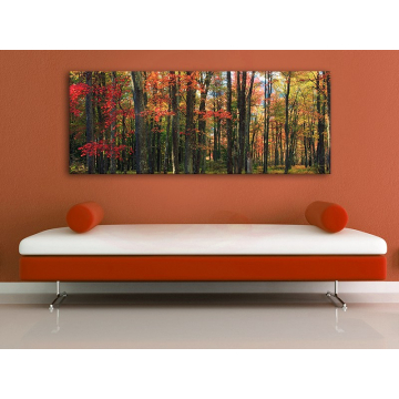 Autumn trees - õszi fák vászonkép 100383