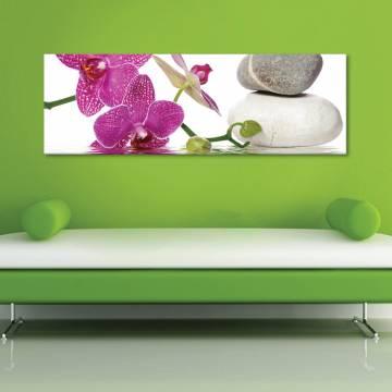 Orchids spa - Orchidea - vászonkép