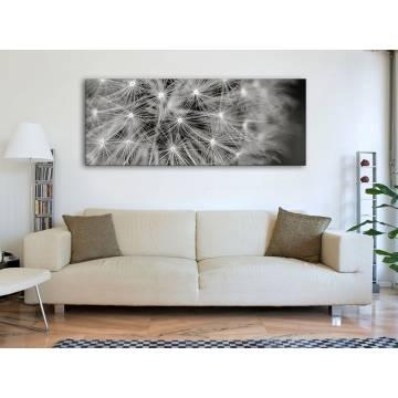 Dandelion Black&White - pitypang fekete fehér vászonkép - 100399