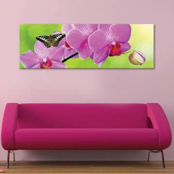 Orchids and butterfly - orchidea és pillangó - vászonkép