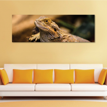 Lizard - vászonkép