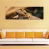 Lizard - vászonkép - 1