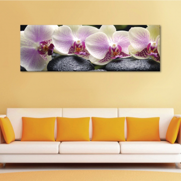 Calm & orchids - Békés orhideák - vászonkép