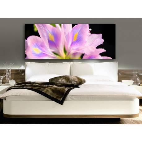Colorful petals - színes szírmok vászonkép 100421
